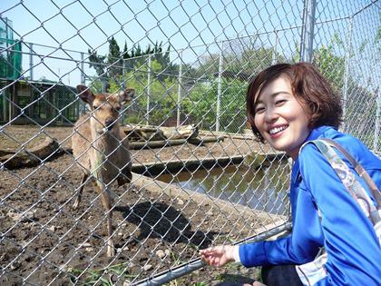 鹿と吉田さん