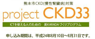 CKD33