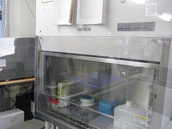 PCR検査室の中
